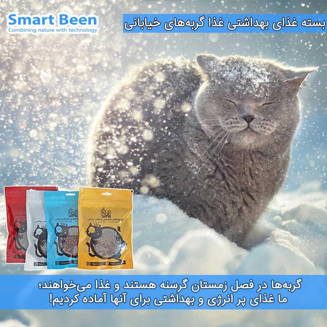 غذای حمایتی گربه